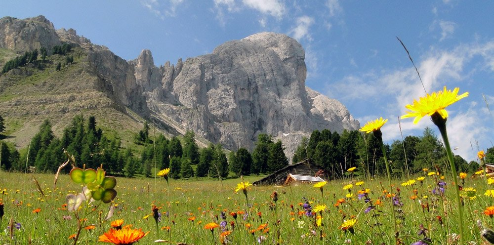 Discover the Badia Valley in the summer